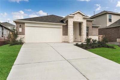 Buda Single Family Home For Sale: 306 Moon Stone Trl