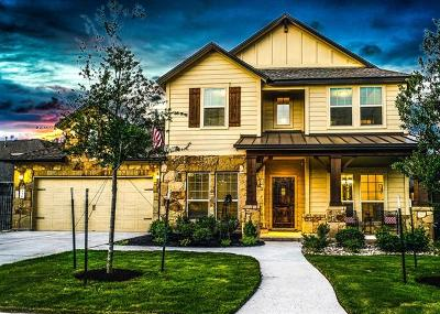 Single Family Home For Sale: 538 San Michelle Ln