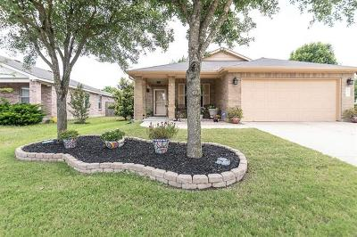 Leander Single Family Home For Sale: 413 Emma Rose