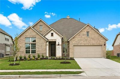 Pflugerville Single Family Home For Sale: 20605 Mouflon Dr