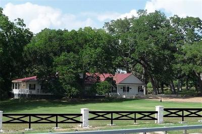 Schulenburg TX Single Family Home For Sale: $775,000