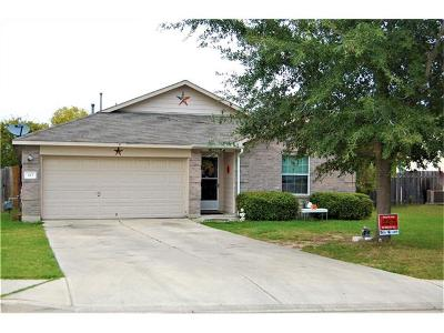 Kyle Single Family Home For Sale: 413 Dandelion Loop