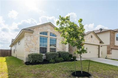 Williamson County Single Family Home For Sale: 241 Geode Ln