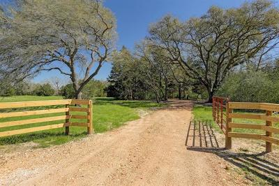 Round Top TX Farm For Sale: $899,999