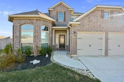Round Rock Single Family Home For Sale: 5869 Mantalcino Dr