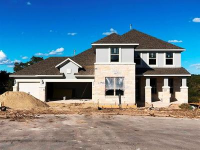 Dripping Springs Single Family Home For Sale: 349 Pink Granite Blvd