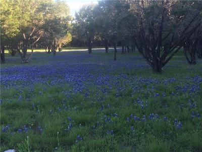 Wimberley Residential Lots & Land For Sale: 300 Windmill Cv #B