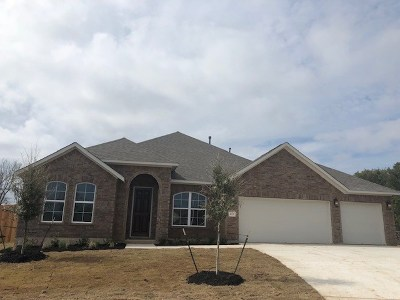 Cedar Park Single Family Home For Sale: 123 Split Oak Dr