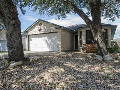Austin Single Family Home For Sale: 9100 Swanson Ln