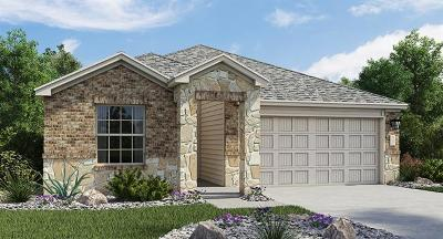 Hays County, Travis County, Williamson County Single Family Home For Sale: 7313 Spring Ray Drive