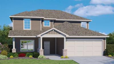 Hutto Single Family Home For Sale: 407 Cassandra Dr