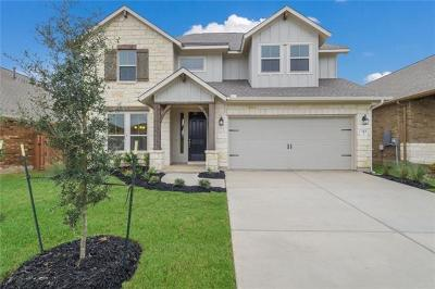 Williamson County Single Family Home For Sale: 344 Vista Portola