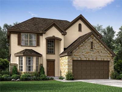 Pflugerville Single Family Home For Sale: 17320 Borromeo Ave