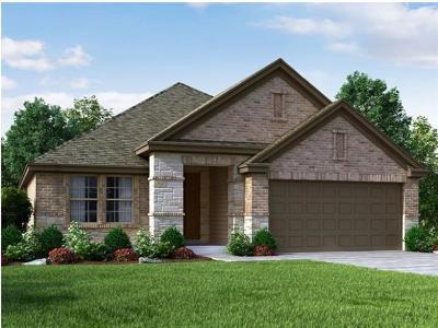 Leander Single Family Home For Sale: 1017 Feldspar Stream Way