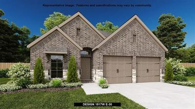 Single Family Home For Sale: 6716 Llano Stage Trl
