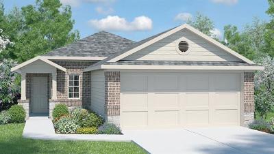 Pflugerville Single Family Home For Sale: 13913 Heidhorn Dr