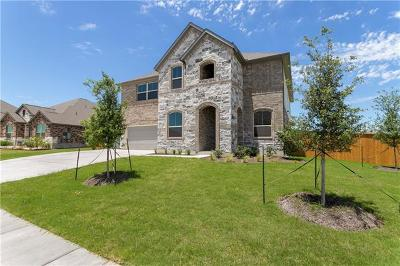 Pflugerville Single Family Home For Sale: 20216 Cloughmore Ct