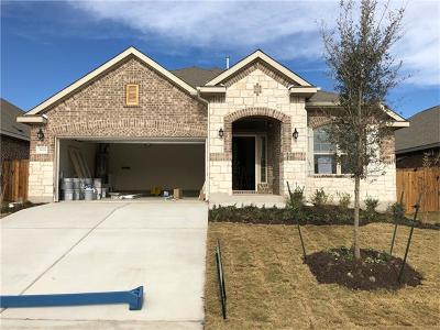 Georgetown Single Family Home For Sale: 3109 Rabbit Creek Dr