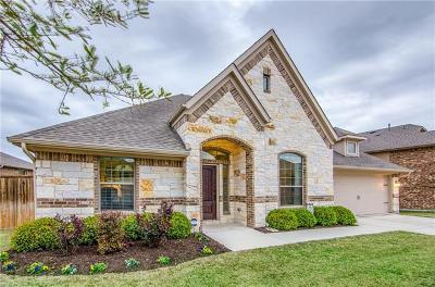 Round Rock Single Family Home For Sale: 2831 Saint Paul Rivera
