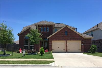 Pflugerville Single Family Home For Sale: 20717 Jackies Ranch Blvd