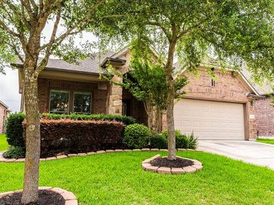 Hutto Single Family Home Pending - Taking Backups: 520 Wiltshire Dr