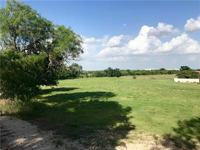 San Marcos Residential Lots & Land For Sale: 420 Blanco River Ranch Rd