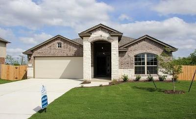 Pflugerville Single Family Home For Sale: 20141 Navarre Ter