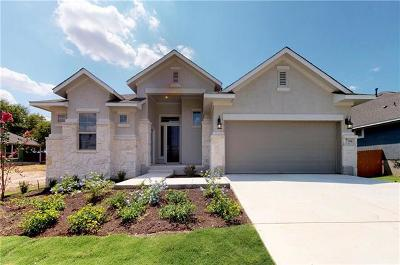 Georgetown Single Family Home For Sale: 144 White Steppe Way