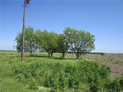 Granger TX Farm For Sale: $174,000