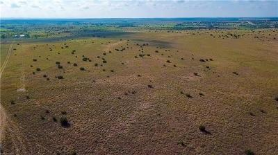 Lampasas Farm For Sale: County Rd 2337
