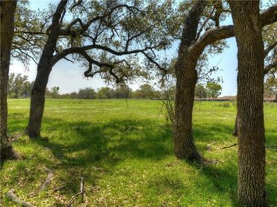 Georgetown Residential Lots & Land For Sale: 304 Highland Springs Ln