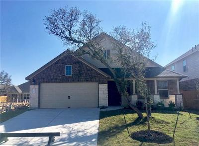 Round Rock Single Family Home For Sale: 4131 Van Ness Ave