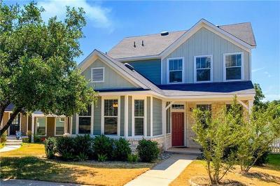 Kyle Single Family Home For Sale: 407 Wetzel