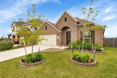Buda Single Family Home For Sale: 341 Vista Gardens Dr
