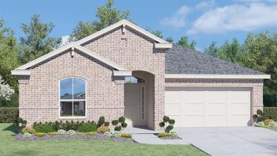 Pflugerville Single Family Home For Sale: 18504 Urbano Dr