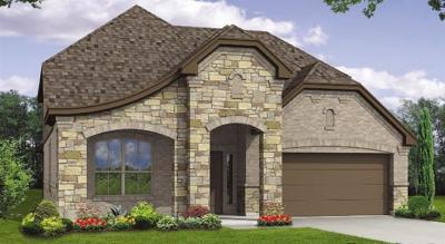 Austin Single Family Home For Sale: 1105 Goldilocks Ln