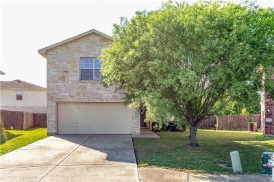 Single Family Home For Sale: 1007 Meandering Cv