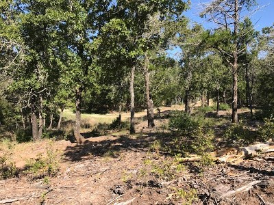 Bastrop Residential Lots & Land For Sale: TBD Wailupe Cir