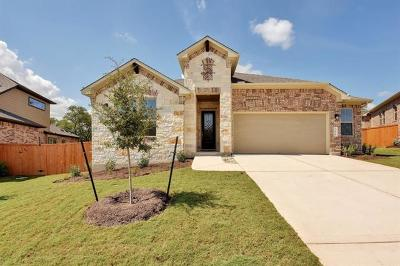 Dripping Springs Single Family Home For Sale: 156 Bell Hill Dr