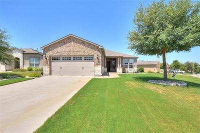 Sun City Single Family Home For Sale: 902 Lake Creek Ct