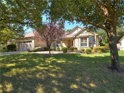 Georgetown Single Family Home For Sale: 114 Nolan Dr