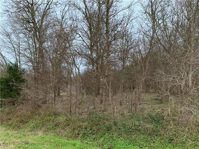 Bastrop County Residential Lots & Land For Sale: 117 W Kikipua Ln