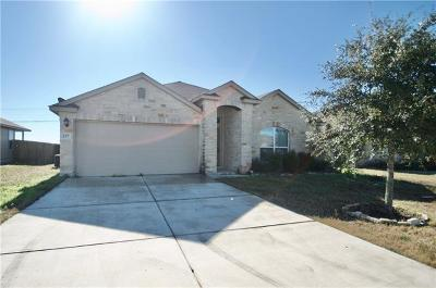 San Marcos Single Family Home Pending - Taking Backups: 237 Teron Dr