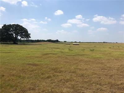 Bell County, Burnet County, Coryell County, Lampasas County, Llano County, McLennan County, Mills County, San Saba County, Williamson County Farm For Sale: Tract 13 Cr 468