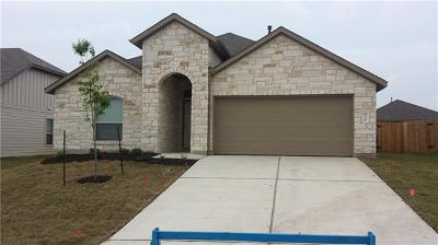 Hays County, Travis County, Williamson County Single Family Home For Sale: 10225 Bankhead