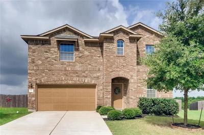 Hutto Single Family Home For Sale: 213 Dowdy Cv