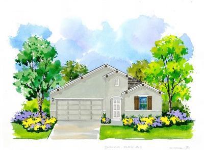 Leander Single Family Home For Sale: 216 Tulum Terrace