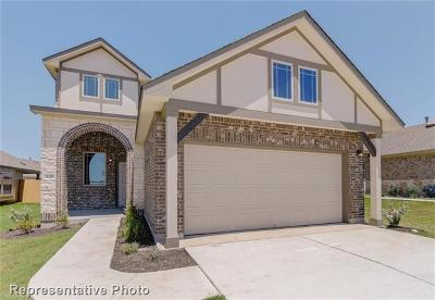 Georgetown TX Single Family Home For Sale: $266,084