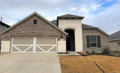 Leander Single Family Home For Sale: 205 Lewisville Ln