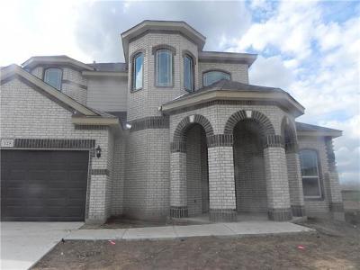 San Marcos Single Family Home For Sale: 125 Emery Oak Ct